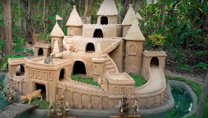 Katzenhaus. Quelle: Screenshot YouTube