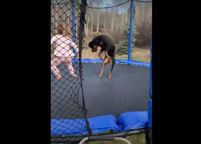 Mädchen und Hund. Quelle: Screenshot YouTube