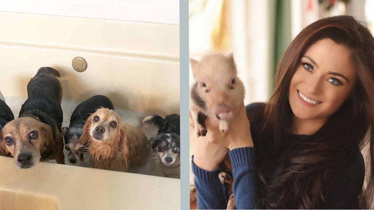 Zuhause für alle: Frau hat sich 90 Haustiere angeschaffen
